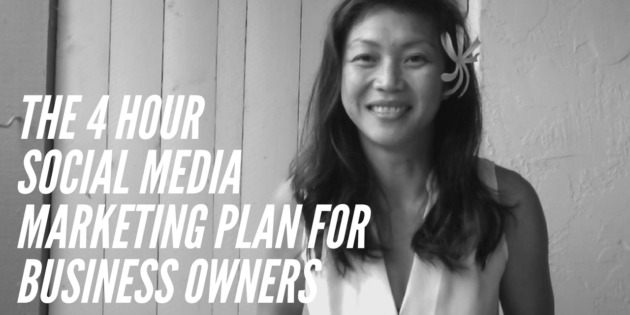 the 4 hours social media marketing plan for business owners